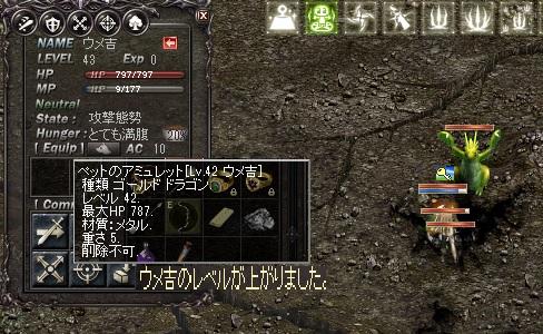 0813夏いべペット育成2