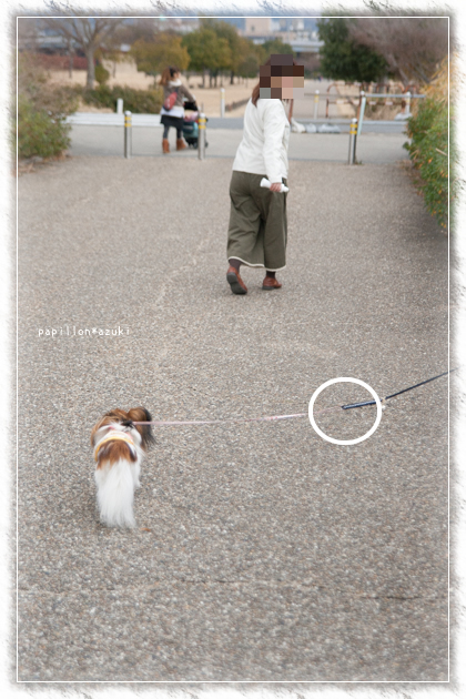 20150111_IMG_37.jpg