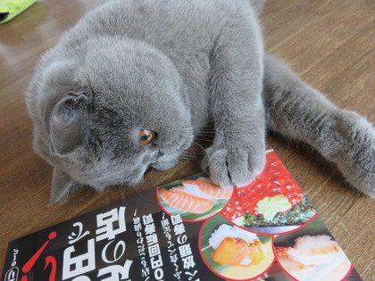 鮭が食べたいですよ