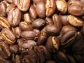 モカ・イルガチェフ焙煎豆