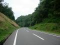 150808ピークの尾根道から道が上野方面へ落ちて行く