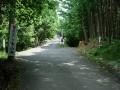 150815牛地蔵〜神峯山寺から本山寺分岐に至る