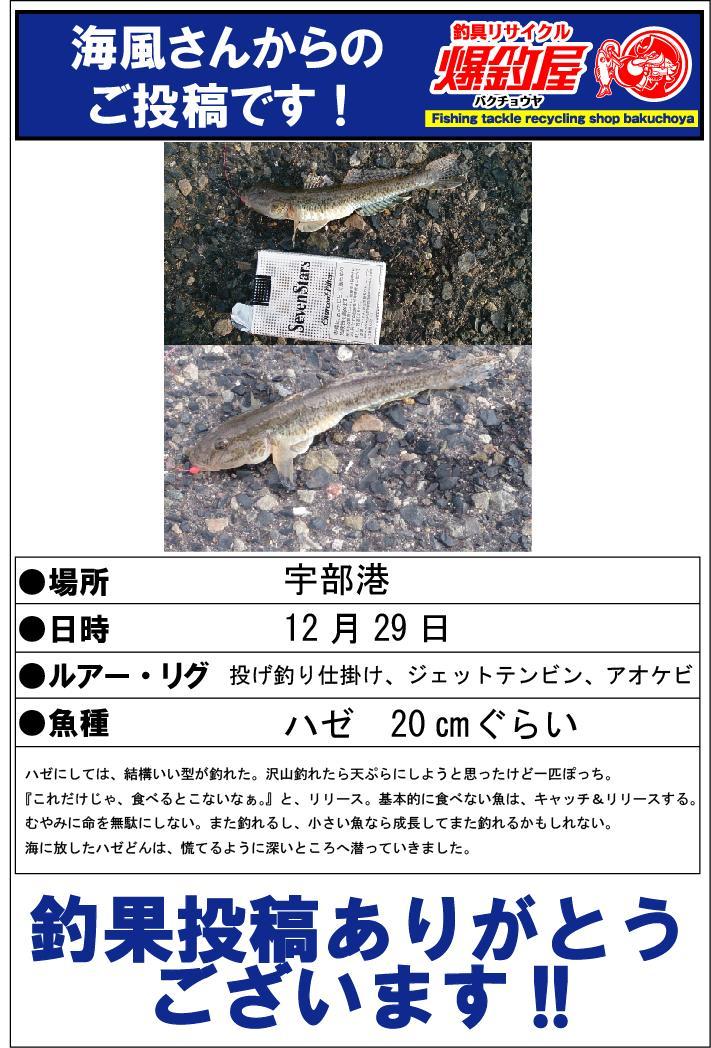 海風さん20150122