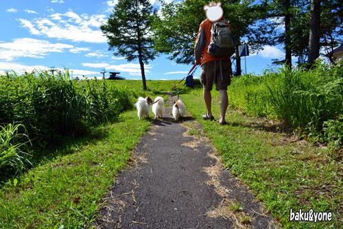 散歩_01
