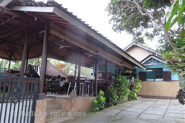 SNatura Villa Ubud Bali (1)