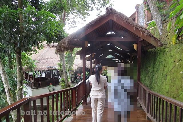 SNatura Villa Ubud Bali (3)