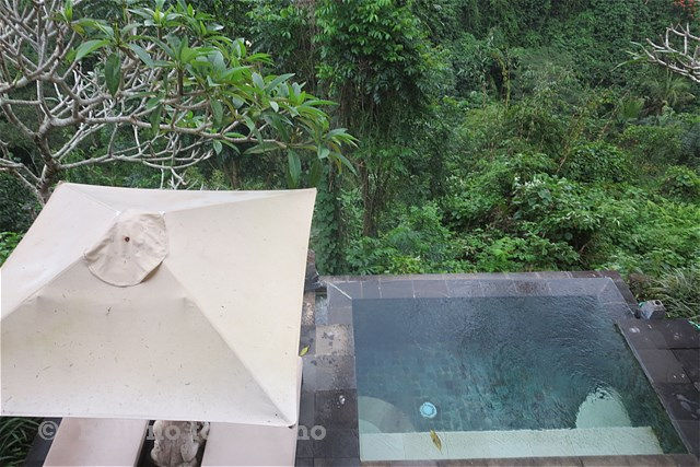 SNatura Villa Ubud Bali (5)