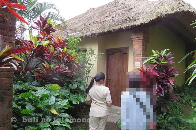 SNatura Villa Ubud Bali (4)