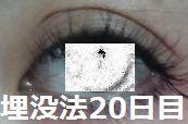 20days1.jpg