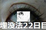 22days2.jpg