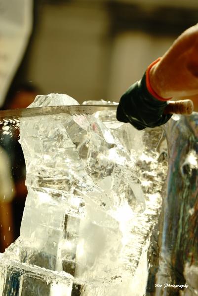 氷の彫刻2bee