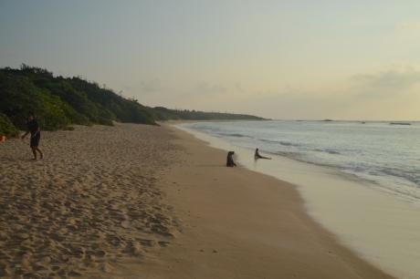 16夕暮れのニシ浜
