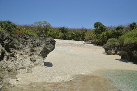 8サンゴの墓場