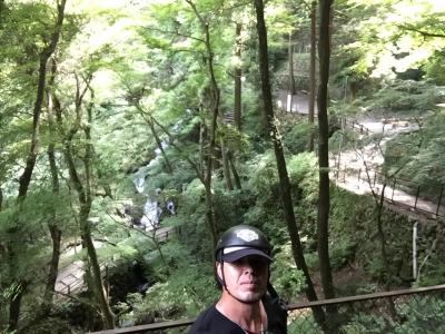 養老の滝10
