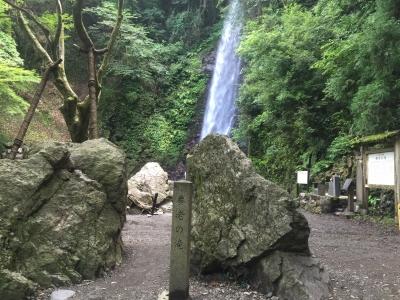 養老の滝9