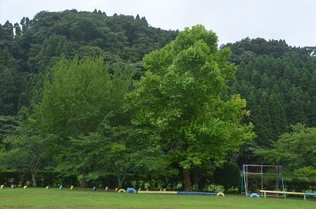 20150717総元小学校25