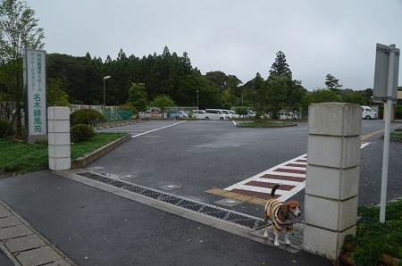 20150717名木小学校07