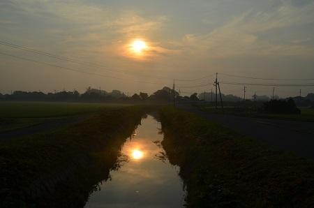 20150726印西朝散歩04