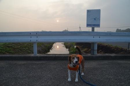 20150801印西朝散歩03