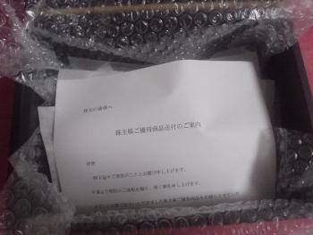 DSC11124 (13)