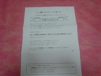 DSC11570 (11)