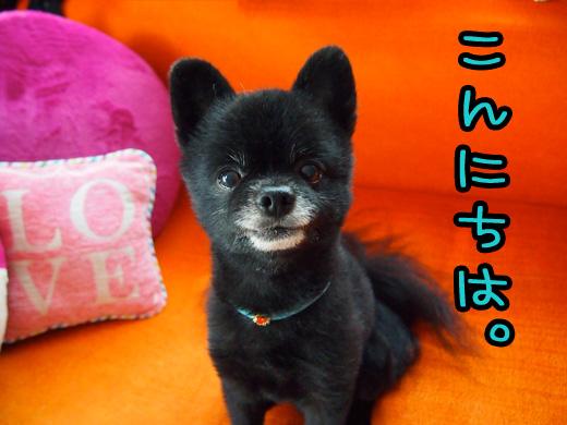 ichioukoewokakerareru.jpg