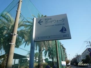 観音埼(5)