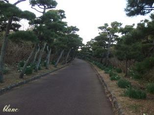 公園(3)