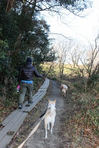 IMG_7637観察公園