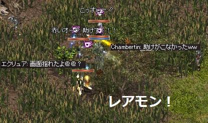 20150724-3.jpg