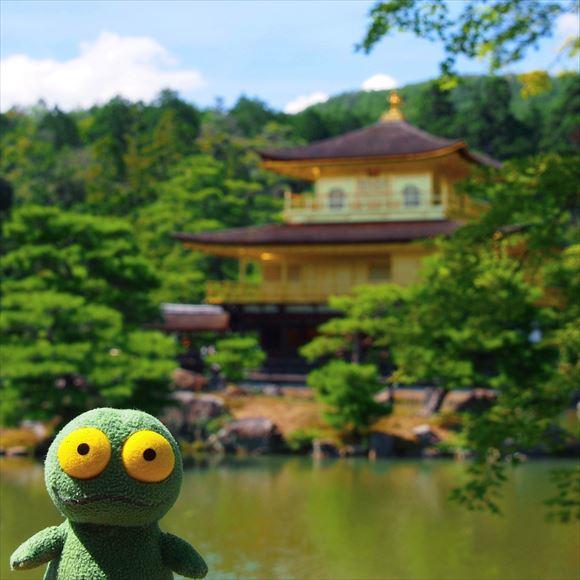ゆうブログケロブログ京都2015 (43)