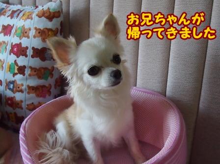 blog6661a.jpg