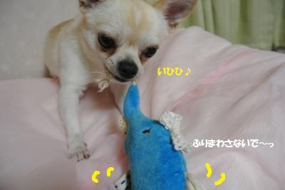 DSC_3422_convert_20150819100438.jpg
