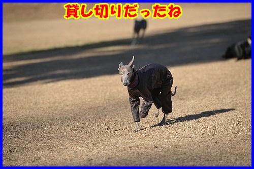DSC_4893.jpg