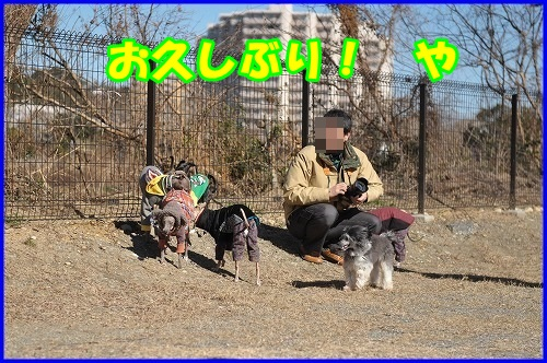 DSC_4920.jpg