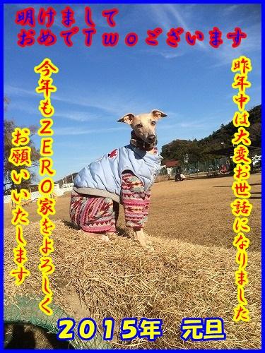 DSC_5000_201501010046373ac.jpg