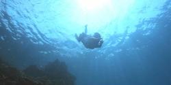 海に飛び込む杏子