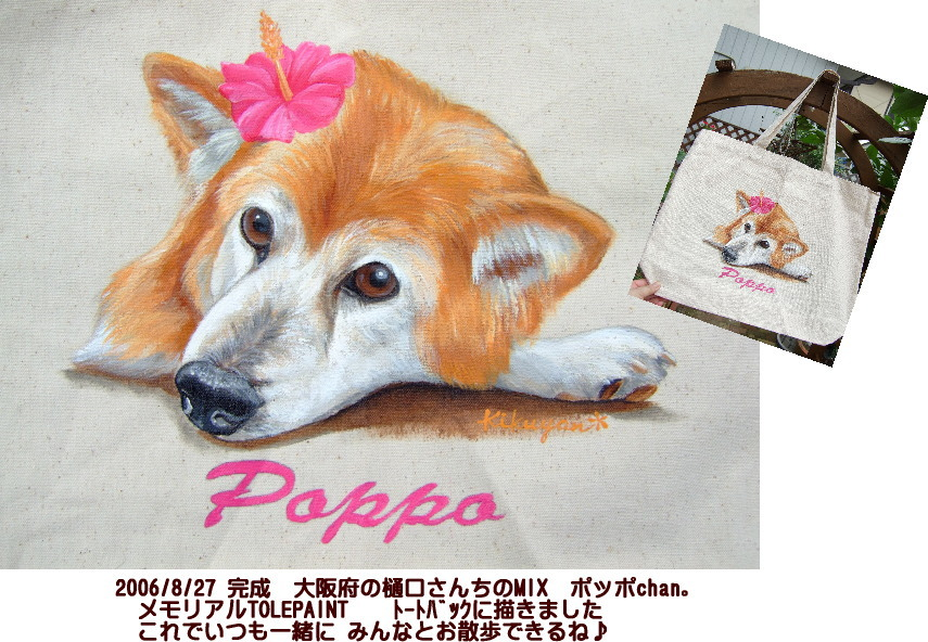041pop.jpg