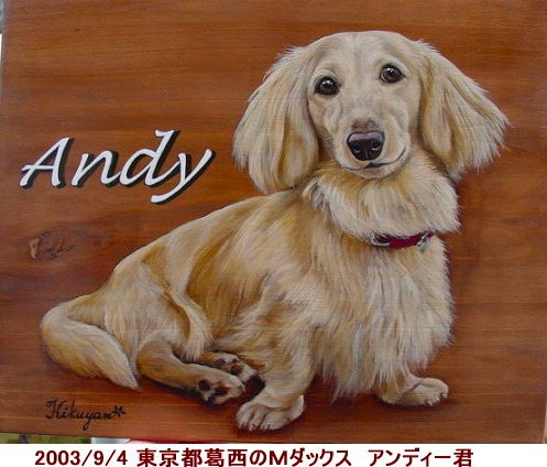 andy001.jpg