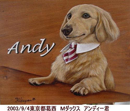 andy002.jpg