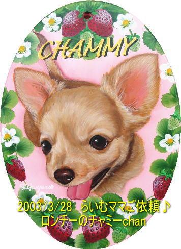 chammy00.jpg