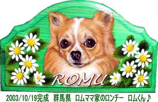 romu.jpg