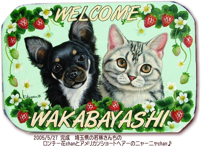 wakaba.jpg