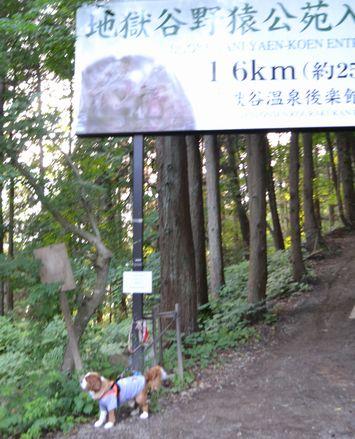 006山道