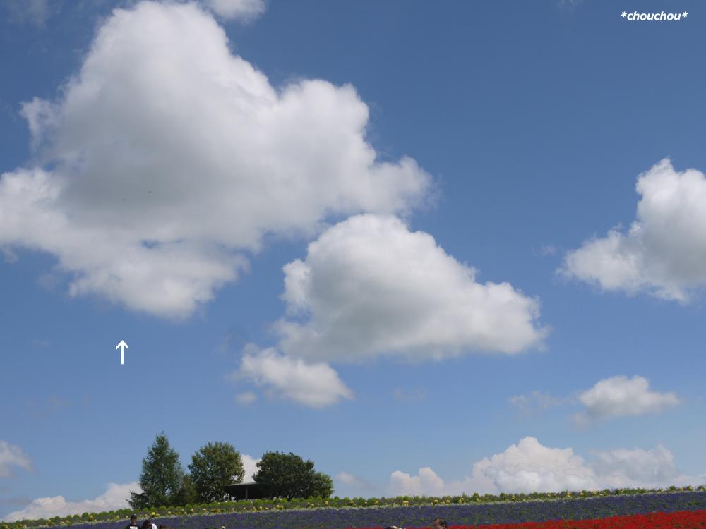 北海道 雲