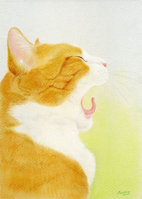 langue-de-chat.jpg