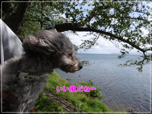 10DSC02743.jpg