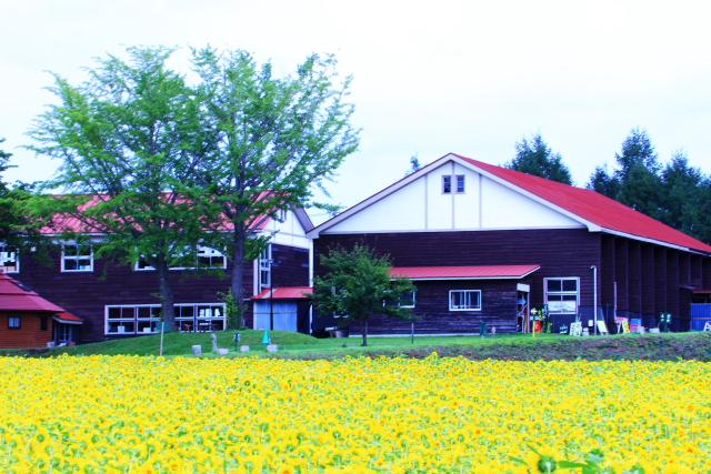 山の学校13