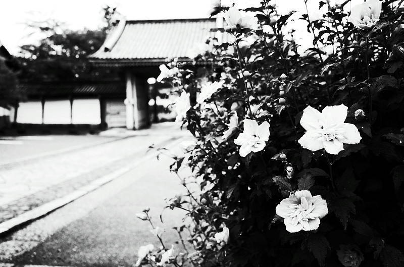 15Blog33121.jpg