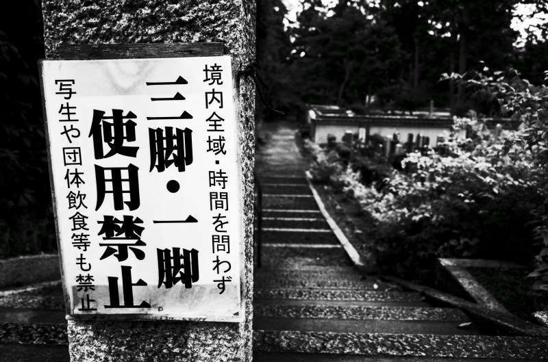 15Blog33161.jpg